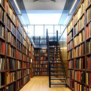 Библиотеки Дубовского